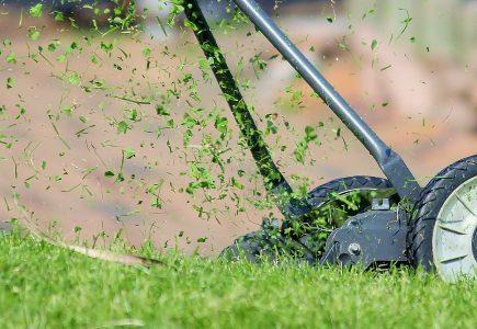 Rádce jak vybrat zahradní sekačku na trávu